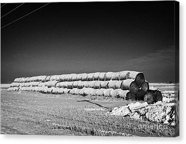 stack of frozen snow covered hay bales in a field Forget Saskatchewan Canada Canvas Print by Joe Fox