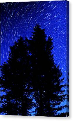 Star Trails In Night Sky Canvas Print by Lane Erickson