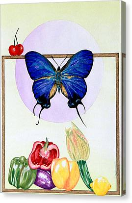 Still Life With Moth #2 Canvas Print