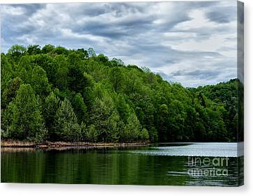 Stonewall Jackson Lake Wildlife Management Area Canvas Print by Thomas R Fletcher