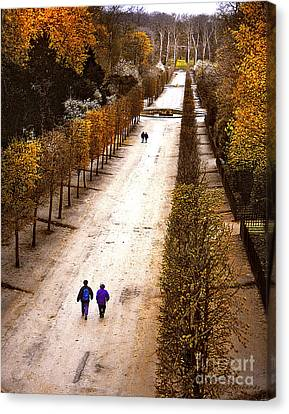 Strolling Versailles Canvas Print by Barbara D Richards
