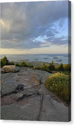 Summer Evening On Cadillac Mountain Canvas Print by Stephen  Vecchiotti