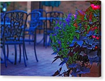 Summer Patio Canvas Print