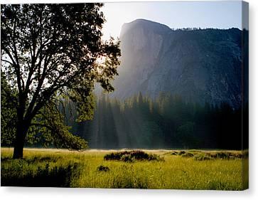 Summer Sunrise In Yosemite Valley Canvas Print