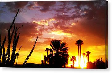 Sunrise In Palm Springs Canvas Print by Chris Tarpening