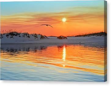 Sunswept Canvas Print by Janet Fikar