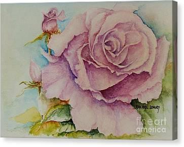 Susan's Rose Canvas Print