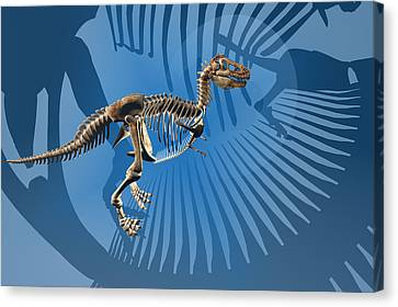 T-rex Canvas Print - T. Rex Dinosaur Skeleton by Carol and Mike Werner