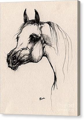 The Arabian Horse Canvas Print