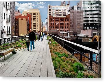 The High Line Urban Park New York Citiy Canvas Print by Amy Cicconi