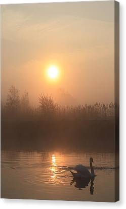 The Peace Of Dawn Canvas Print by Linsey Williams