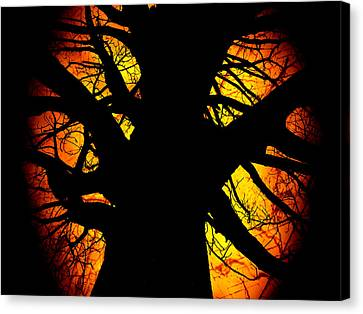 The Tree Of Knowledge Canvas Print