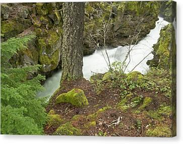 The Upper Rogue River Flows Canvas Print