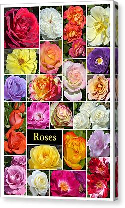 Canvas Print featuring the photograph The Wonderful World Of Roses by Cindy McDaniel