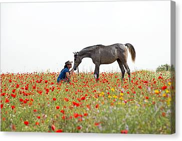 Three At The Poppies' Field... 4 Canvas Print