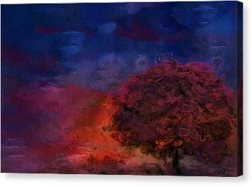 Through The Mist Canvas Print by Jack Zulli