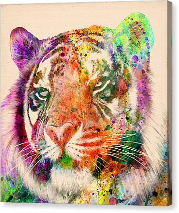 Caricature Canvas Print - Tiger Portrait  by Mark Ashkenazi