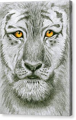 Tiger Tiger Burning Bright Canvas Print by Jo Appleby