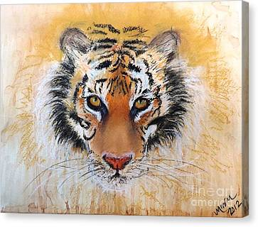 Tiger Tiger Canvas Print by Michelle Wolff