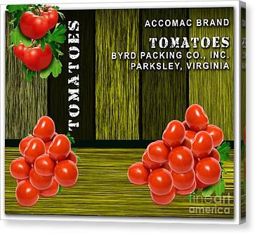 Tomato Canvas Print - Tomato Farm by Marvin Blaine