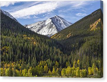 Torreys Peak  Canvas Print by Aaron Spong