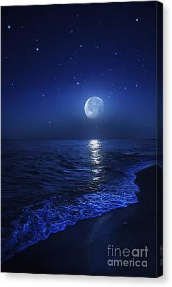 Tranquil Ocean At Night Against Starry Canvas Print by Evgeny Kuklev