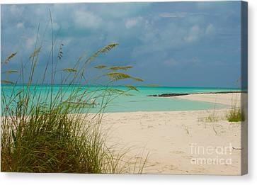 Treasure Cay Canvas Print by Carey Chen