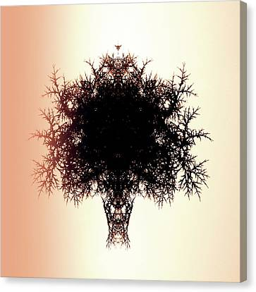 Tree Of Twigs Canvas Print by Sharon Lisa Clarke