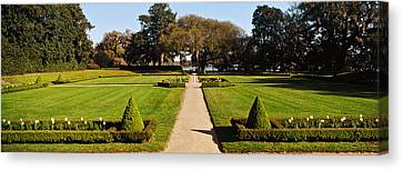 Garden Scene Canvas Print - Trees In A Garden, Middleton Place by Panoramic Images