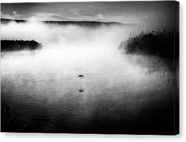 Desolation Canvas Print - Untitled by Miki Meir Levi