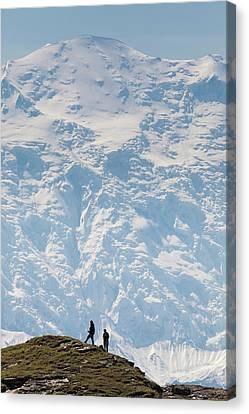 Usa, Alaska, Denali National Park Canvas Print by Hugh Rose