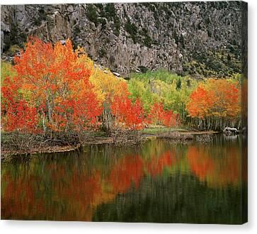 Usa, California, Sierra Nevada Canvas Print by Christopher Talbot Frank