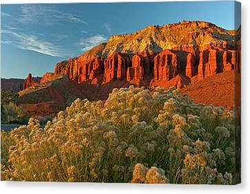 Usa, Utah, Capitol Reef National Park Canvas Print