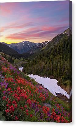 Usa Washington State, Olympic National Canvas Print by Gary Luhm