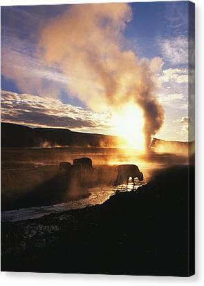 Usa, Wyoming, Yellowstone National Canvas Print by Adam Jones