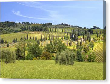 Brunello Canvas Print - Val D'orcia by Joana Kruse