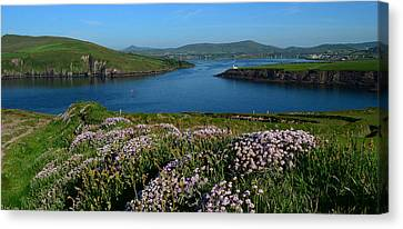 View Over Dingle Bay Canvas Print by Barbara Walsh