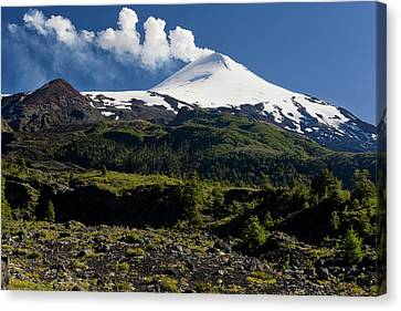 Villarrica National Park, Chile Canvas Print by Scott T. Smith