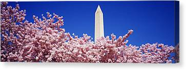 Washington Monument Washington Dc Canvas Print by Panoramic Images