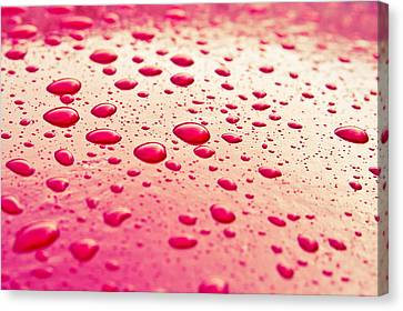 Pour Canvas Print - Water Droplets by Tom Gowanlock