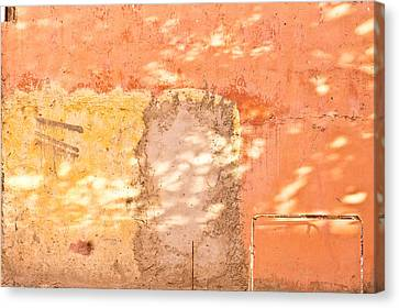 Weathered Wall Canvas Print by Tom Gowanlock