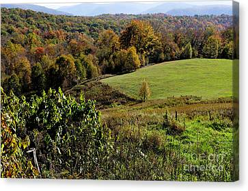 West Virginia Fall Color Canvas Print by Thomas R Fletcher