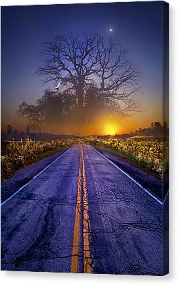 Picnic Table Canvas Print - What Dreams May Come by Phil Koch