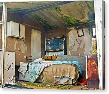 Where Do They Sleep Now Canvas Print by Tony Reddington
