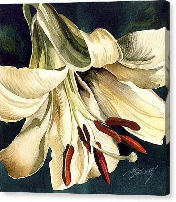 White Lily Canvas Print by Alfred Ng
