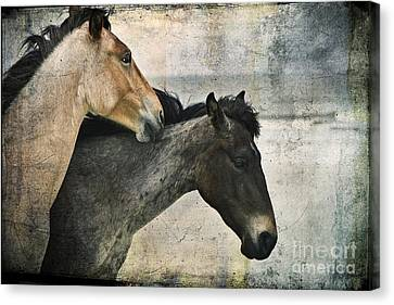 Wild Love Canvas Print by Laura Marie Jones