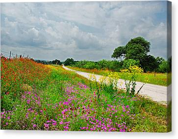 Wildflower Wonderland Canvas Print