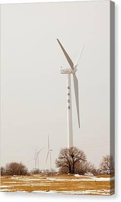 Wind Farm Canvas Print by Ashley Cooper