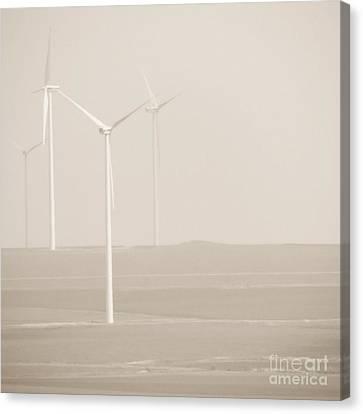 Windmills Canvas Print by Gabriela Insuratelu
