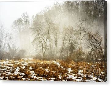 Nicholas County Canvas Print - Winter Fog And Trees by Thomas R Fletcher